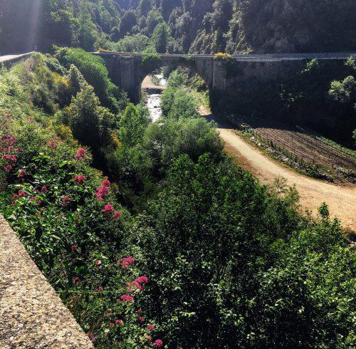 16-paludi-longobucco_ponte_trionto_1890_longobucco